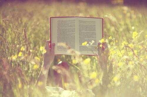 livro e ler